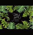 rain forest banner vector image