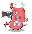 sailor stomach character cartoon mascot vector image