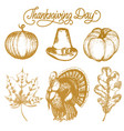 thanksgiving for invitations vector image
