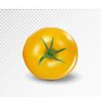 tomato top side realistic yellow tomato vector image vector image