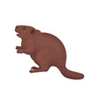 beaver wild forest rodent animal vector image