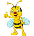 cartoon happy bee giving thumbs up vector image vector image