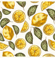 lemons and leaves hand drawn seamless vector image vector image