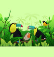 birds resting on branches of tree vector image vector image