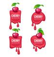 cherry season collection vector image