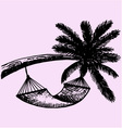 Hammock hanging palm vector image vector image