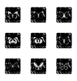Insects butterflies icons set grunge style vector image vector image