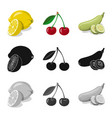 isolated object of vegetable and fruit logo vector image vector image