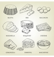 set different kinds graphic cheese vector image vector image