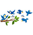 tree branch and birds collection vector image
