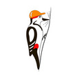 woodpecker in helmet vector image
