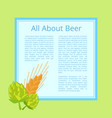 all about beer poster with cabbage and wheat ear vector image vector image