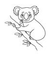 Cartoon koala vector image vector image