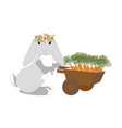 easter bunny with carrots vector image vector image