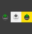 graphic logo design with medical marijuana vector image vector image
