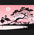 landscape with two flamingos vector image