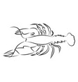 lobster hand drawn design on white background vector image vector image
