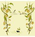 olives branches vector image