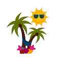 palm trees with seashells and a sun vector image vector image