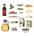 soy bean food products sauce milk and tofu vector image