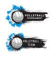 volleyball sport tournament ball banner halftone