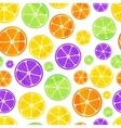 Juicy fruit slices on white seamless pattern vector image