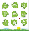 collection of organic bio natural labels vector image