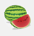 watermelone vector image vector image