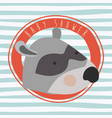 baby shower card with cute raccoon vector image