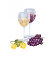 Glasses of wine with grapes and piece of cheese vector image vector image