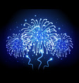 holiday firework independence day vector image vector image