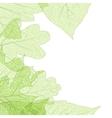 leaf skeletons autumn template eps 10 vector image vector image