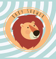 baby shower card with cute lion vector image vector image
