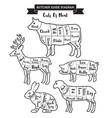 butcher guide cuts of meat diagram vector image vector image