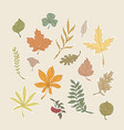 set autumn leaves vector image vector image
