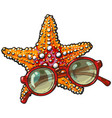 hand drawn starfish and round sunglasses in red vector image