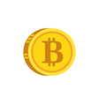 bitcoin digital gold concept icon vector image vector image