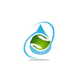 water and leaf vector image vector image