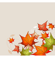 Autumn background with red and orange maple leaves vector image vector image