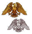 heraldic eagle symbol power and strength vector image