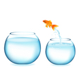 Jumping Goldfish vector image vector image