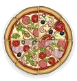 pizza color picture vector image vector image