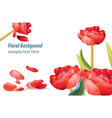 red tulip flower background spring season vector image