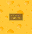 cheese background pattern vector image