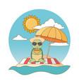 cute animal enjoying summer vacations vector image