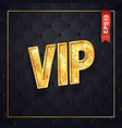 gold vip text isolated logo on dark quilted vector image vector image