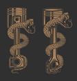snake on car piston design element for poster vector image vector image