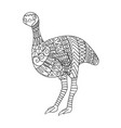 stylized emu bird isolated on white background vector image