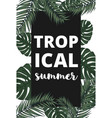 summer banner with palm leaves vector image vector image