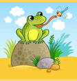 the frog sits on a large rock vector image vector image